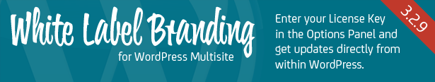 White Label Branding til WordPress Multisite - Indtast din licensnøgle i Options Panel og opdatere plugin indefra WordPress admin.