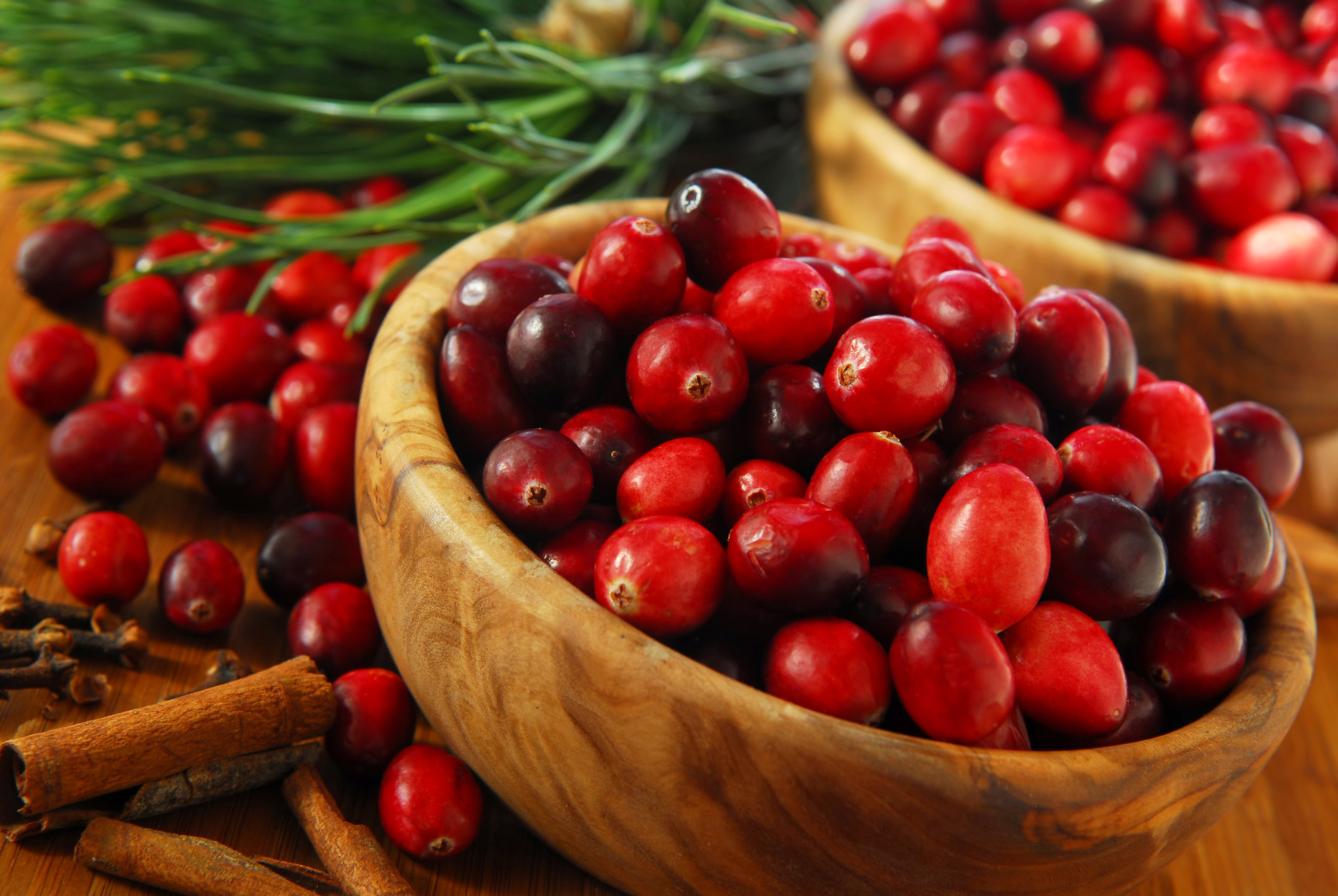 Cranberries in bowls (get the image on Photodune.net)